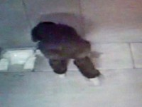 page_cezaevinde-sungerli-oda-skandali-tuvalet-kamera-tarafindan-izleniyor_017982550