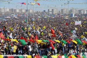 amed